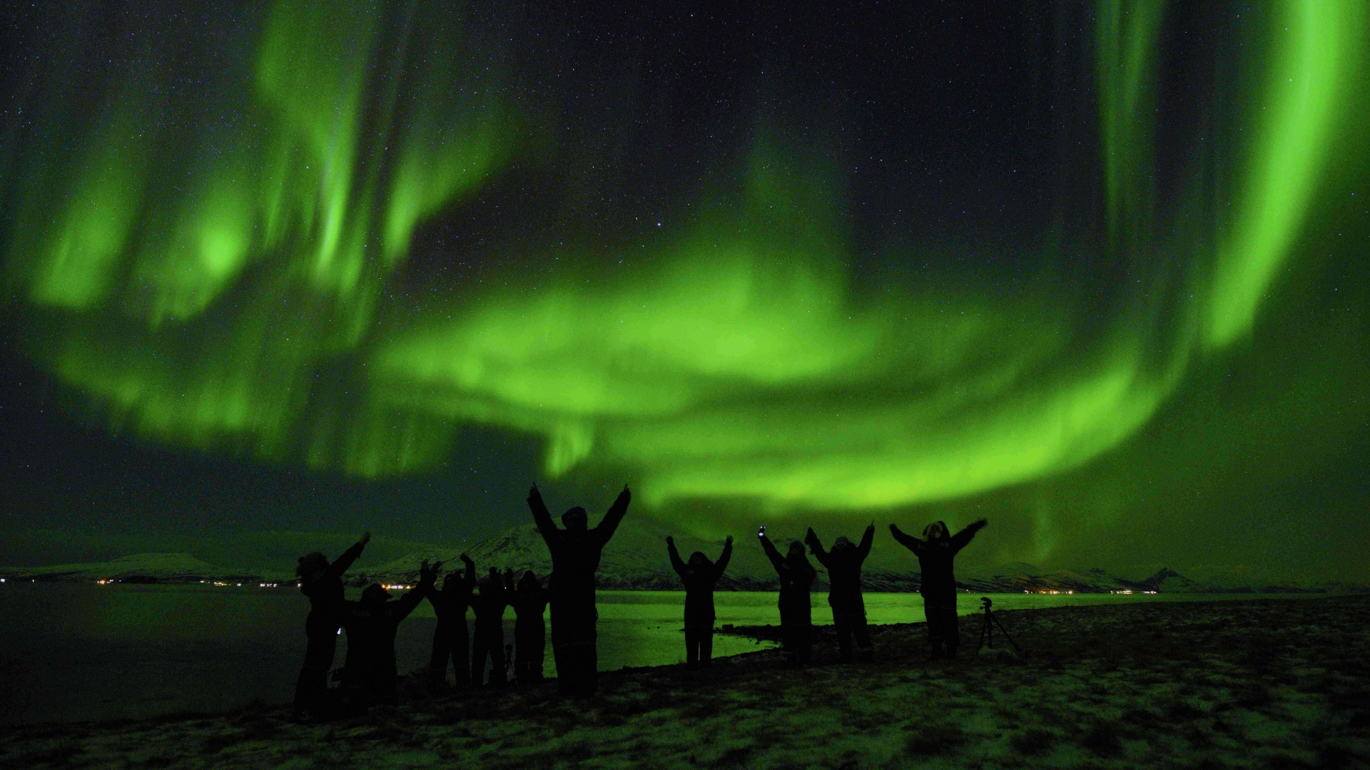 People admiring the Northern Lights