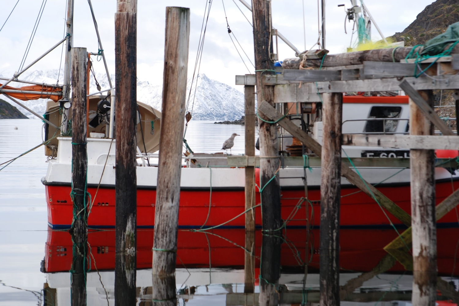 4 Days – VIP Sailing From Tromsø to Hammerfest