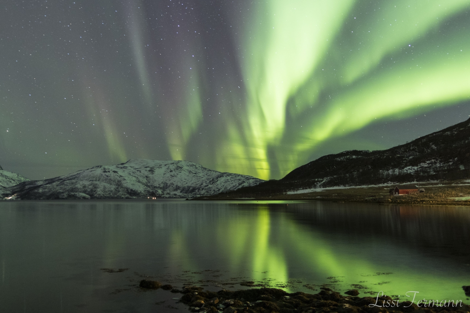 Northern lights above sea and mountains