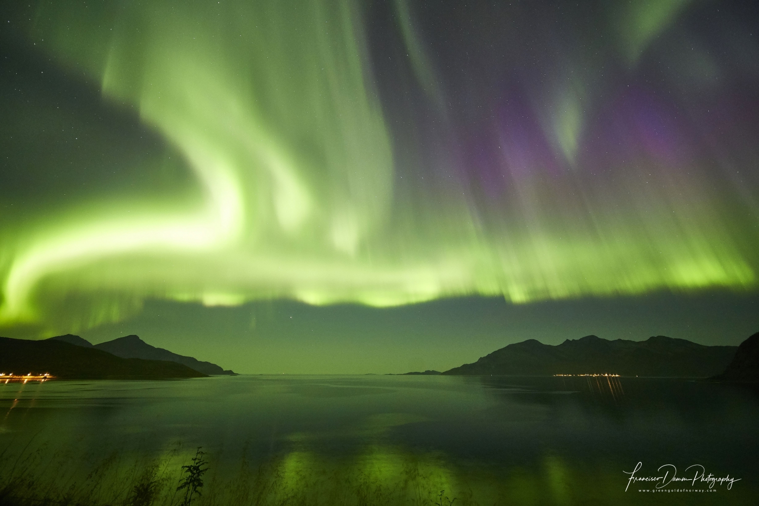 northern lights in the sky surrounded by beautiful nature