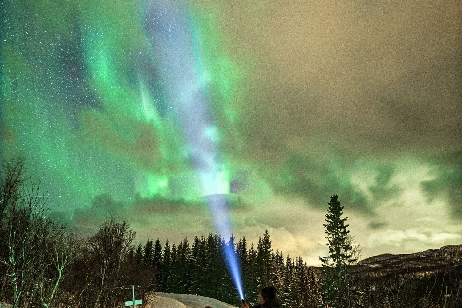 Northern Lights over the road