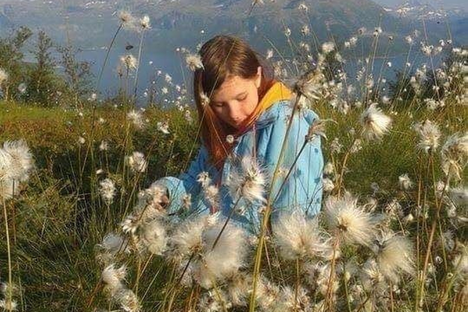 Girl sitting on the ground surrounded by cotton grass