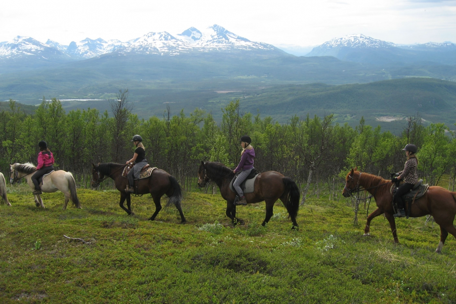horseback riding in the nature