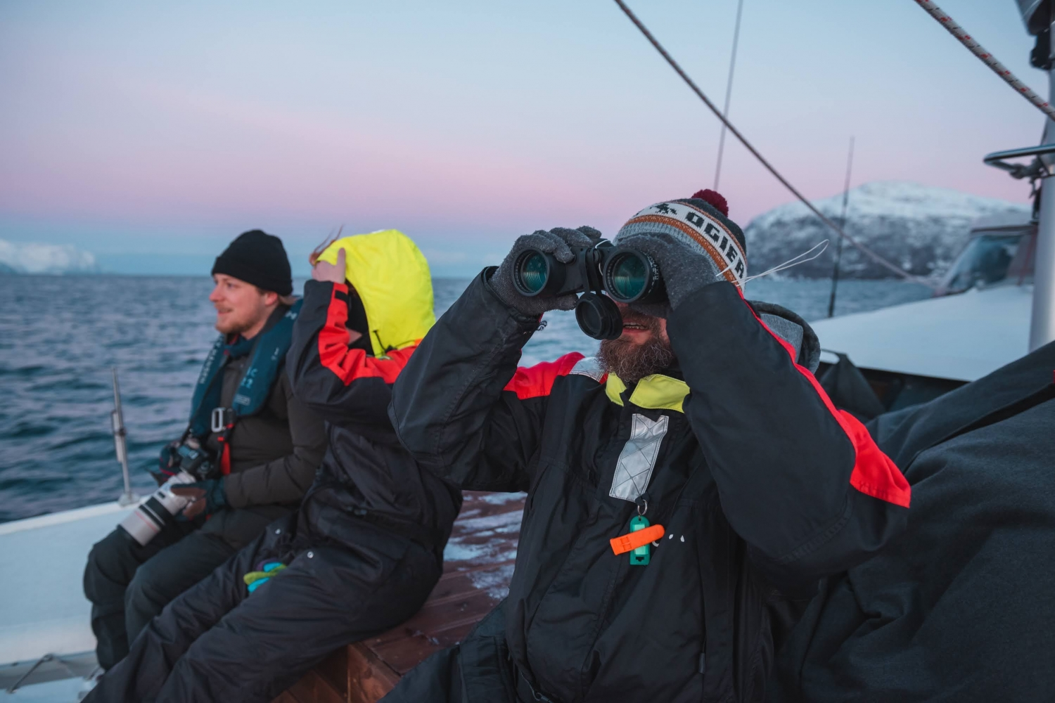 Guests searching for whales using binoculars