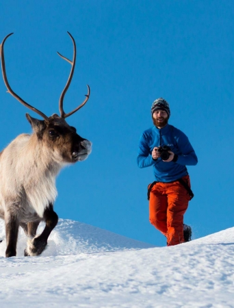 Man trying to take photo of a reindeer running in the snow
